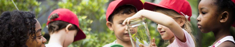 Economics and Pedagogy of Early Childhood Education